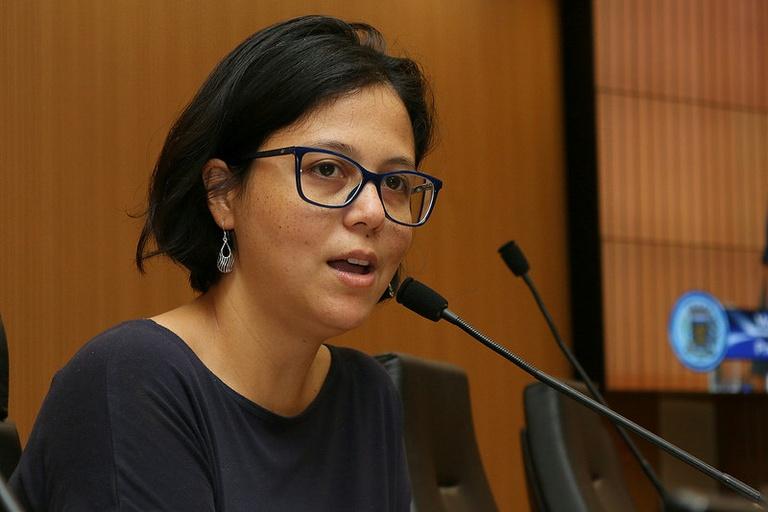 Comissão da Mulher propõe ampliação do debate sobre creche em tempo integral em Campinas